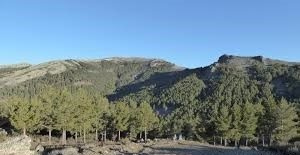 sender.Ascensión al Alto del Porrejón y Pico de Bañaderos (Madrid)