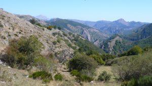 Cerro Pedroso